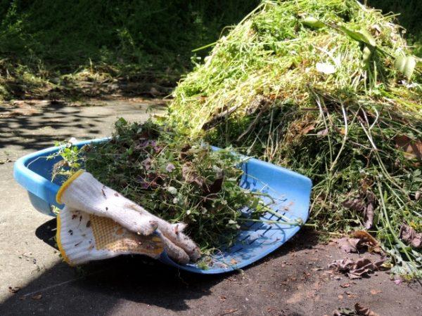 庭をきれいに保つ雑草対策。外構リフォームで草むしりの手間を手放す方法